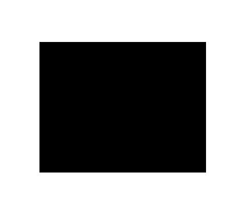 Chart for EVONIK INDUSTRIES NA O.N.